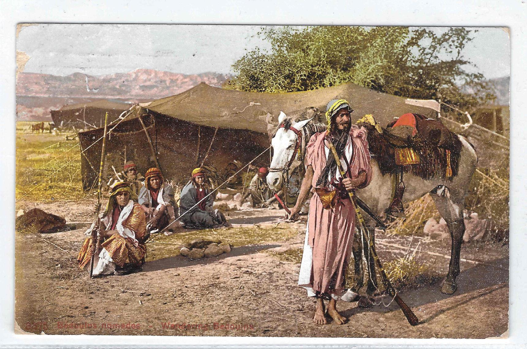 البدوية في فلسطين.jpg