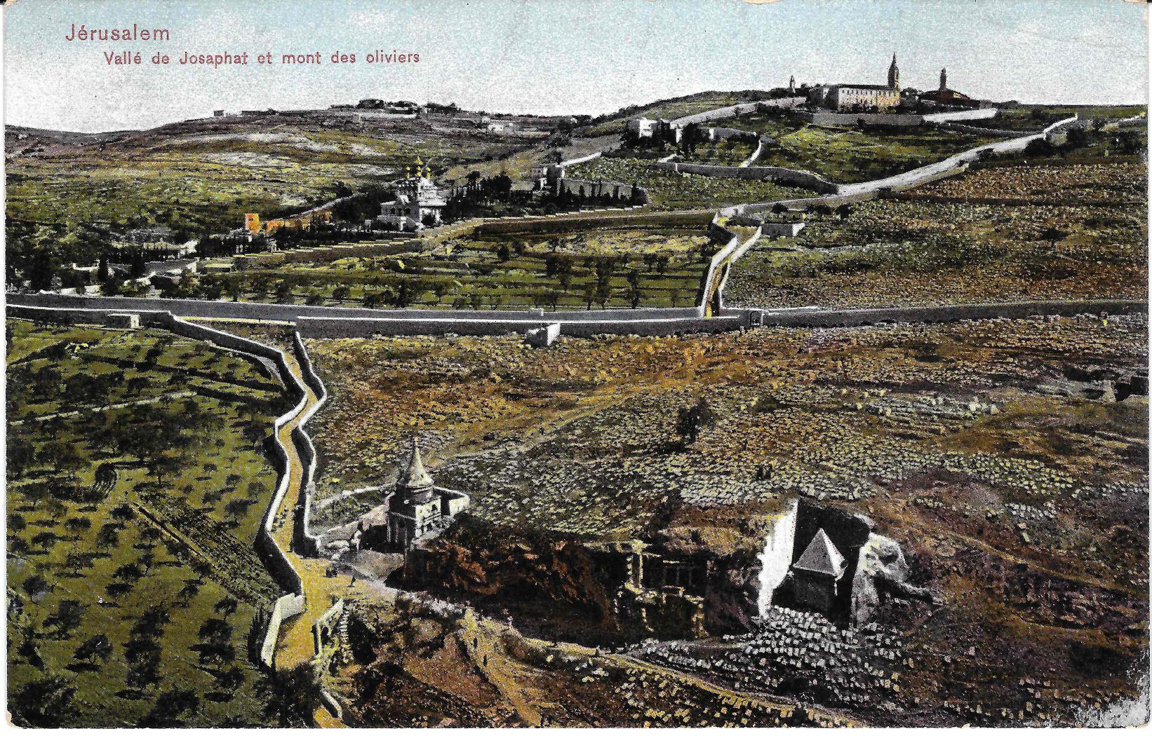 الزيتون - القدس.jpg