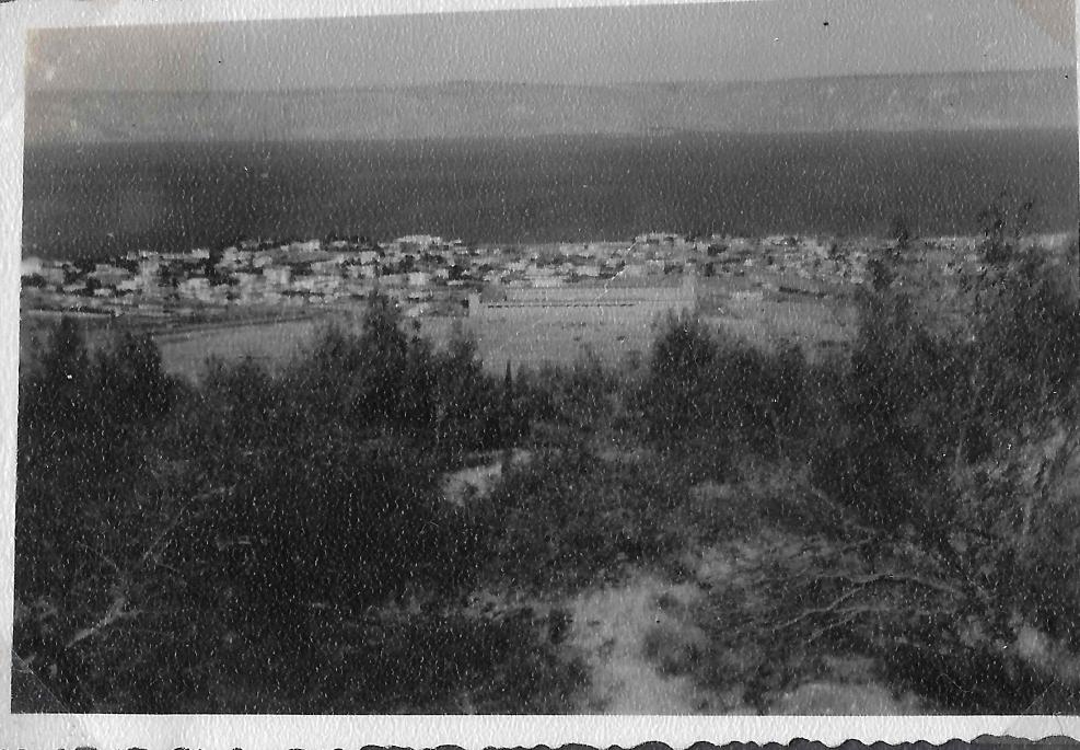 عام 1946.jpg