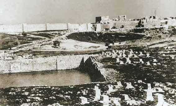 maamanallah-1854v8.jpg