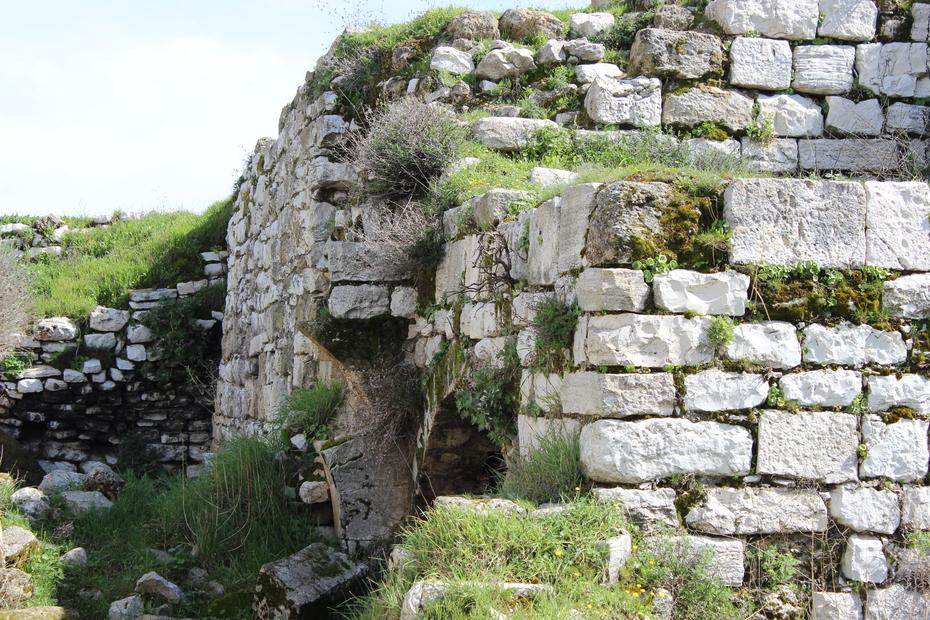 لبيوت بلدة الرام القديمة من عام 1341 هجري (24).JPG