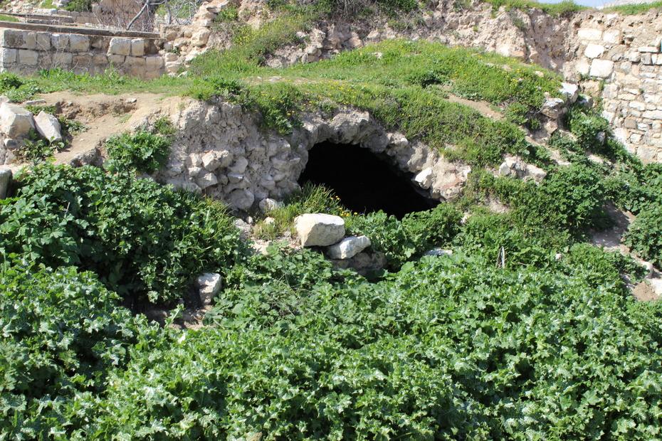 لبيوت بلدة الرام القديمة من عام 1341 هجري (30).JPG