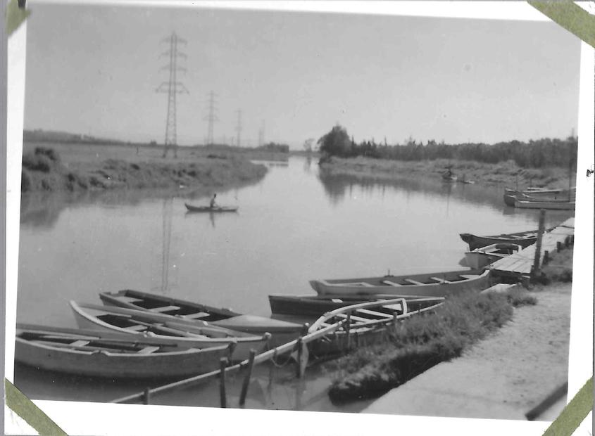 الربيع 1900--1.jpg