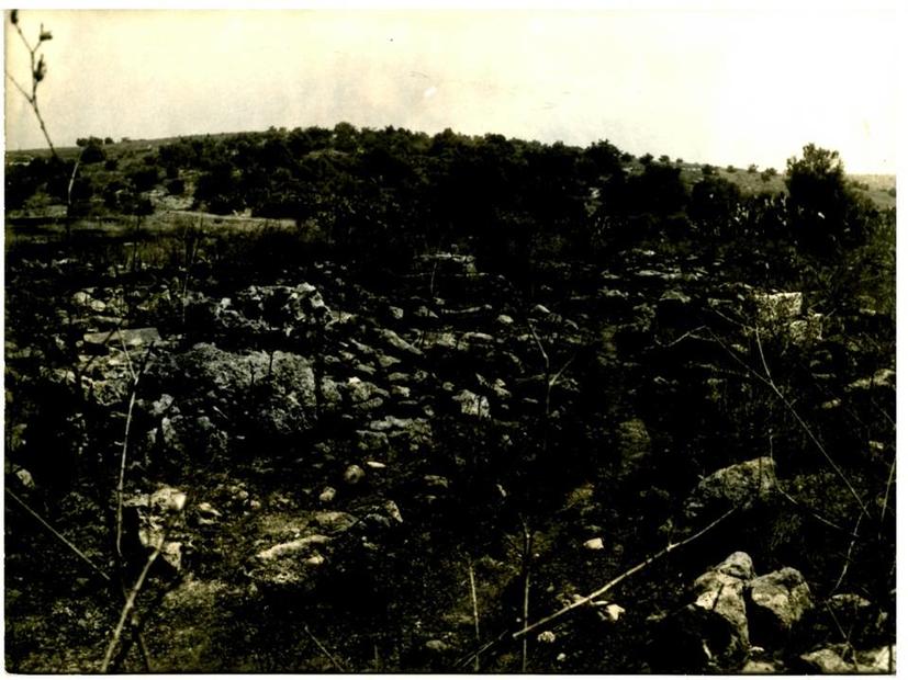 عام لمقبرة قرية عنابة و قد هدمت معظم الأضرحة.jpg