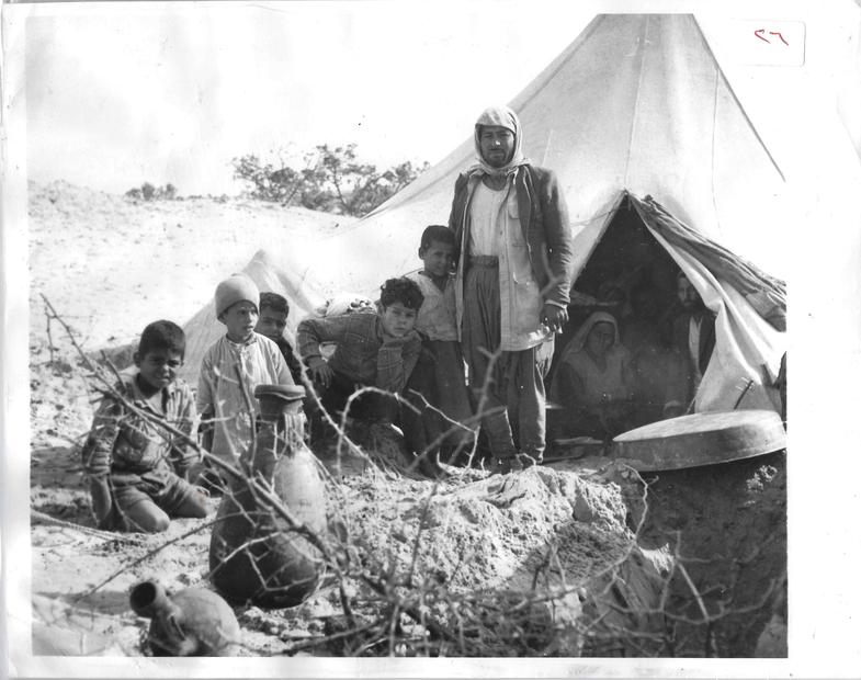 مخيمات اللاجئين الفلسطينيين عام 1949.jpg