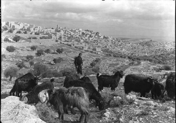 Bethlehem 1942.jpg