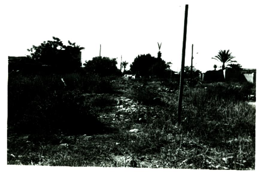 Al Majdal Village 1.pdf