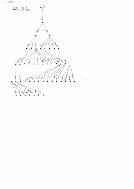 سلمان.PDF